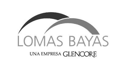 logo_lomasbayas